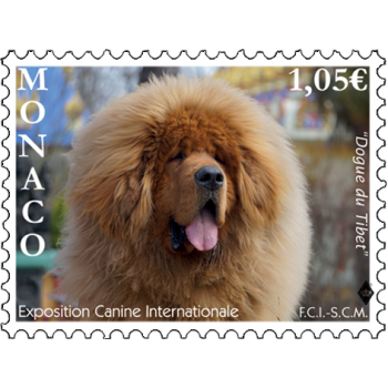 INTERNATIONAL DOG SHOW 2019